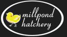 Mill Pond Footer Logo