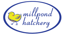 Mill Pond Hatchery Mobile Retina Logo